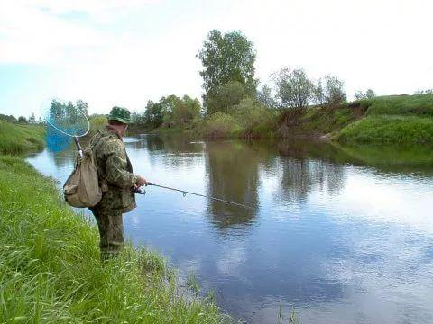 Пивное озеро рыбалка